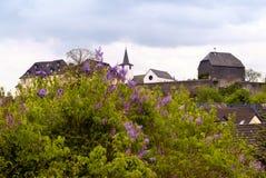 Daun i Eifelen Royaltyfria Foton