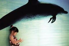 dauphin de Chinois d'enfant Images stock