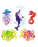 Dauphin de dessin animé, étoile de mer, poulpe, seafad. Vecteur Photos stock