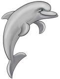 Dauphin gris illustration libre de droits