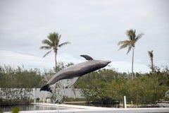 Dauphin pendant l'exposition à Miami Image stock
