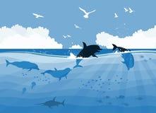 Dauphins de flottement sur un fond de mer illustration libre de droits