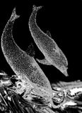 Dauphins en cristal Images libres de droits