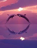 Dauphins jouant dans le coucher du soleil Photographie stock