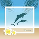 Dauphins sur la plage avec des palmettes et des fleurs de frangipani illustration de vecteur