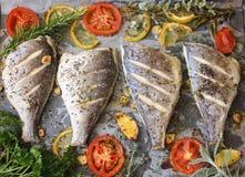 Daurade soutenue - cuisine méditerranéenne photographie stock libre de droits