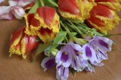 Dauw op bloemen Stock Afbeelding