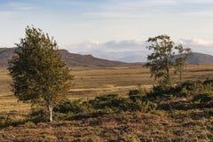 Dava Moor- und Cairngorms-Ansicht in die Hochländer von Schottland stockfotos