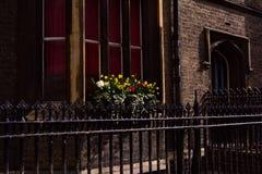 Davanzale della finestra con i fiori/vaso da fiori, Cambridge, Regno Unito Fotografie Stock