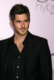 Dave Annable. Arriving at the Environmental Media Awards at the Ebell Theater in Los Angeles, CA on  November 13, 2008 Royalty Free Stock Image