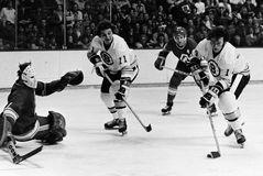 Dave Forbes, Boston Bruins Lizenzfreie Stockfotos