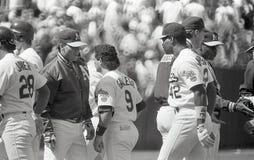 Dave Henderson Oakland Athletics #42 royaltyfri foto