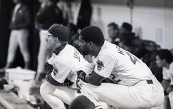 Dave Henderson Oakland Athletics #42 Royaltyfri Bild