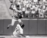 Dave Henderson Oakland Athletics royaltyfria foton