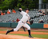 Dave Palladino, Charleston RiverDogs Royalty Free Stock Photos