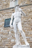 David. The statue of david by Michelangelo, in Florence, Italy stock photo