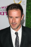 David Arquette Stock Image