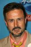 David Arquette Stock Images