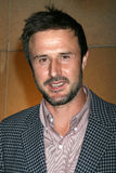 David Arquette Stock Photos