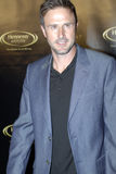 David Arquette on the red carpet. David Arquette appearing on the red carpet stock photo