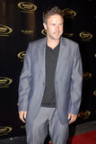 David Arquette on the red carpet. David Arquette appearing on the red carpet royalty free stock image