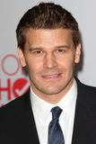David Boreanaz Royalty Free Stock Photography