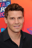 David Boreanaz Royalty Free Stock Photo