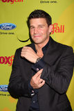 David Boreanaz Royalty Free Stock Images
