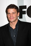 David Boreanaz Stock Photography