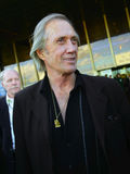 David Carradine. American actor John Carradine Known stock image