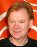 David Caruso Stock Images