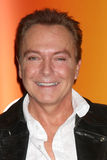 David Cassidy Royalty Free Stock Photo