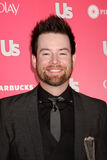David Cook Royalty Free Stock Image