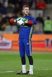 David de Gea during training session Royalty Free Stock Images
