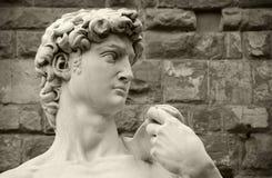 David de Michelangelo, Florencia Italia Fotos de archivo libres de regalías