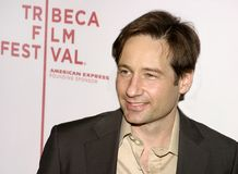 David Duchovny photo libre de droits