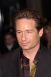 David Duchovny Royalty Free Stock Photography