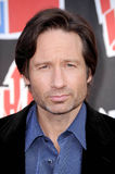David Duchovny photo stock