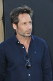 David Duchovny photos libres de droits