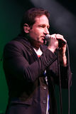 David Duchovny photographie stock libre de droits