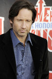 David Duchovny appearing live. Royalty Free Stock Photography
