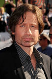 David Duchovny Stock Images