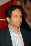 David Duchovny Royalty Free Stock Images