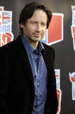 David Duchovny semblant sous tension. photo libre de droits