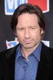 David Duchovny Royalty Free Stock Image