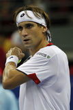 David Ferrer Stock Photo
