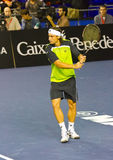 David Ferrer Royalty Free Stock Photo