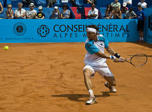 David Ferrer Stock Image