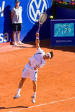 David Ferrer Royalty Free Stock Photos