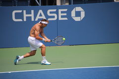 David Ferrer Stock Images